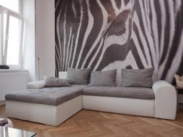 Apartment Schönbrunner