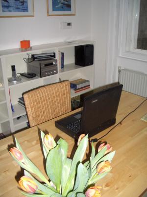 Living-Bedroom