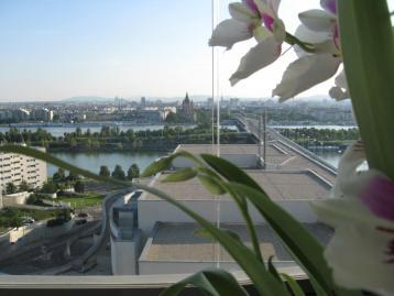 Spektakulären Blick über Wien